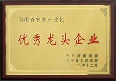 河南省***龙头企业